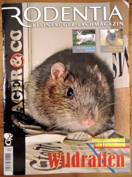 Coverrodentia
