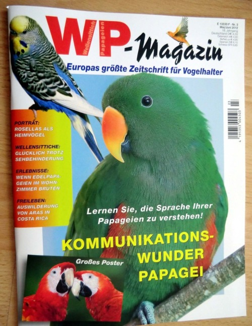 Coverwpmagazin