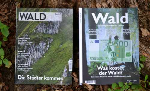 coverwald-wald