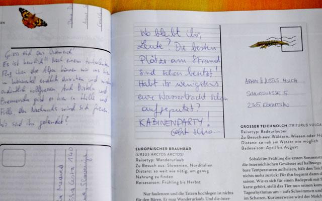 Schöne Briefe Schreiben : Entdeckt wald versus lieber verspielt als