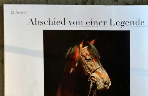 Ausschnitt aus der Frühjahrsausgabe: Nachruf auf ein Pferd.